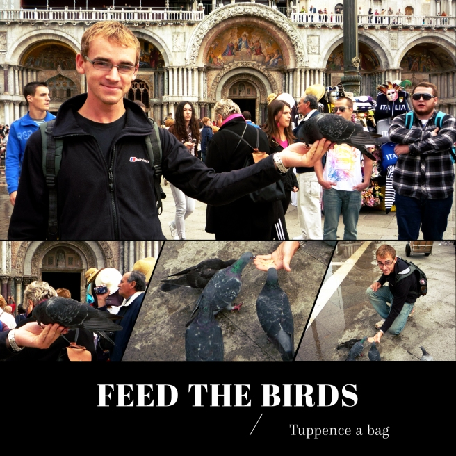 feedthebirds